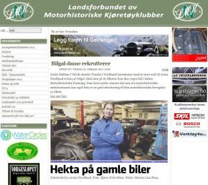 LMK hjemmeside 26.02.14