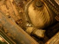 Rustfinken har lagt egg i Fiaten